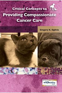 Critical Concepts to Providing Compassionate Cancer Care