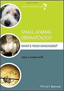 Small Animal Dermatology: What´s Your Diagnosis?