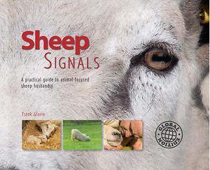 Sheep Signals