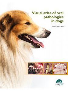 Visual atlas of oral pathologies in dogs