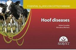 Essential Guide on Cattle Farming, Hoof diseases