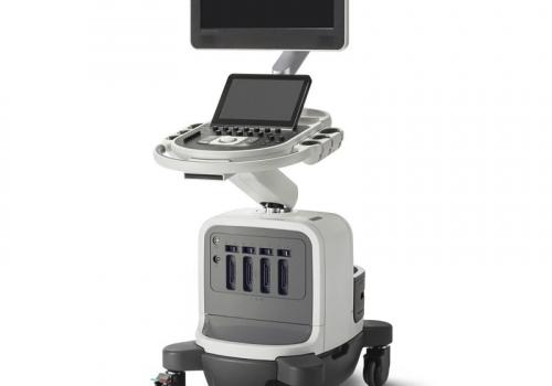 Vatsaontelon ultraäänitutkimuksen perusteet, osa 3