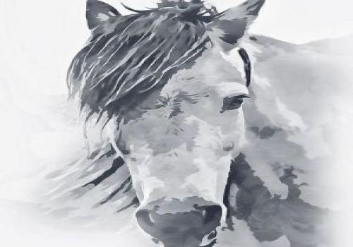 Hevosen kivun hoitaminen -PERUTTU